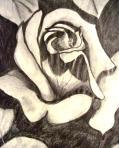 Sketch #3