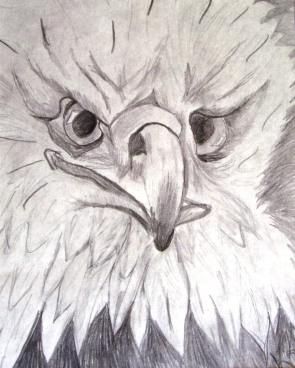 Sketch #9